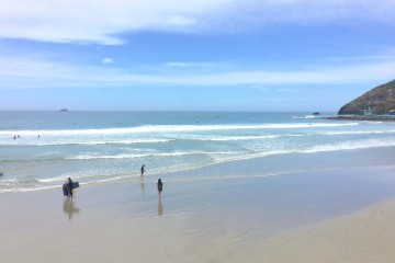 St. Clair Beach, Dunedin, New Zealand Road Trip;Things to Know Before Traveling to New Zealand