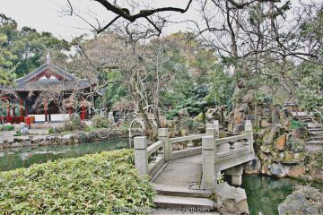 View in Nanxiang Guyi Garden
