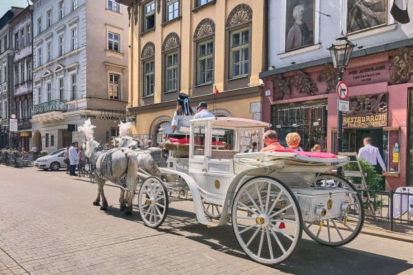 Horse-carriages are only there for sightseeing purposes; Things to do in Krakow