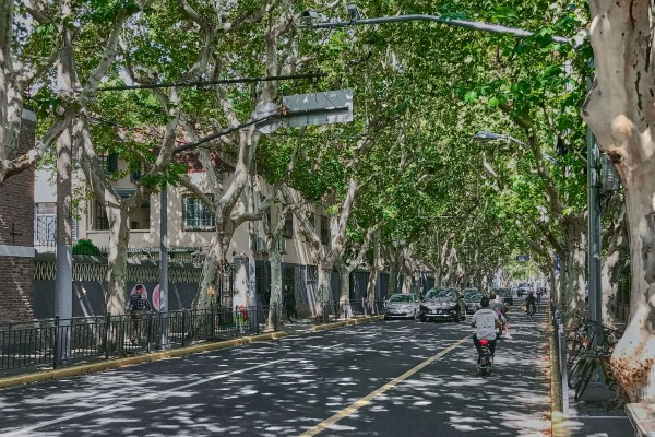 Shaoxing Road in Shanghai's Former French Concession