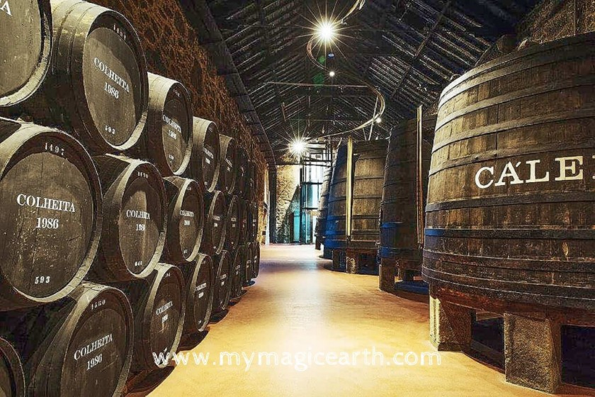 Wine tasting in Calem, Porto