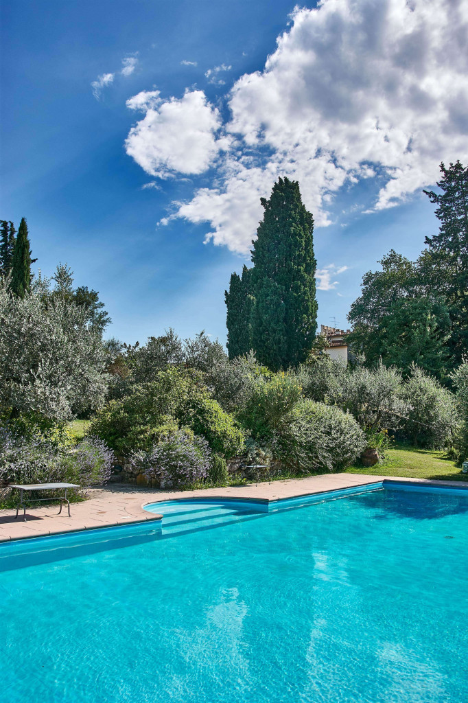 a swimming pool is in the surrounding nature, olive trees, and lavender bushes, a Mediterranean flair