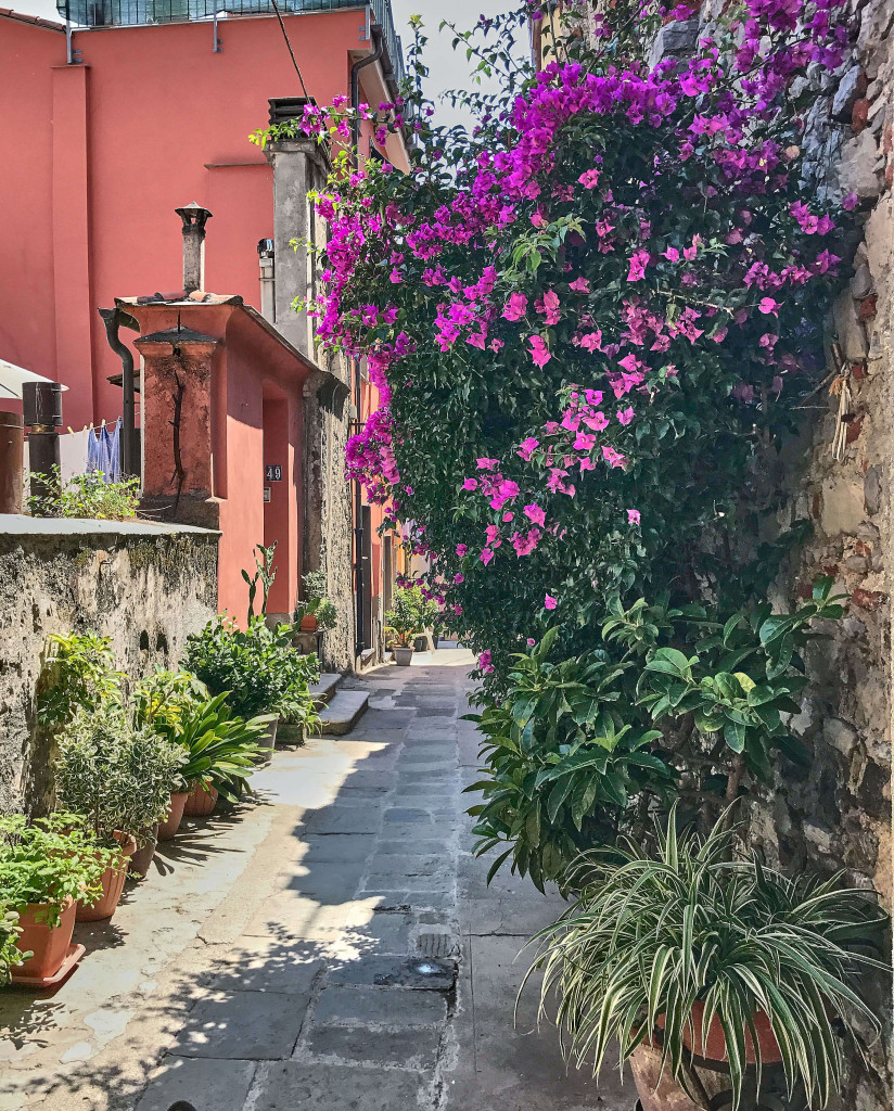 A labyrinth of picturesque alleys