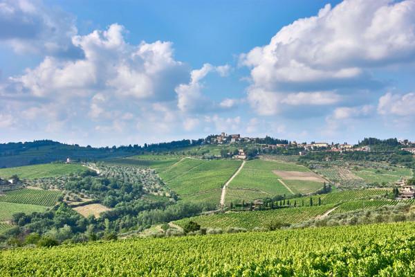 Castellina-in-Chianti countryside, Tuscany