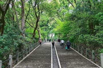 368 stairs east Sheshan Park, Shanghai