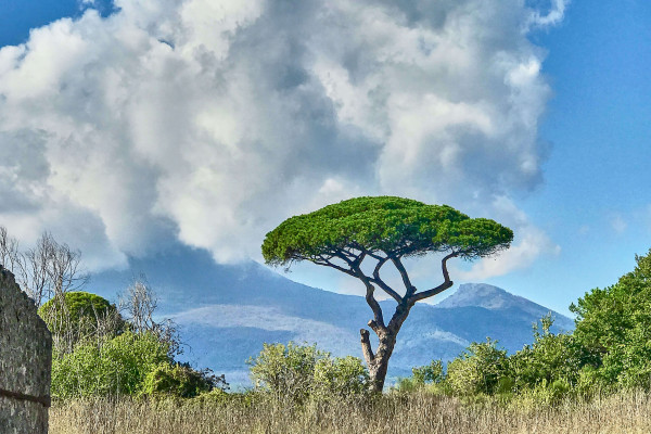 View of Mount Vesuvius inside Pompeii