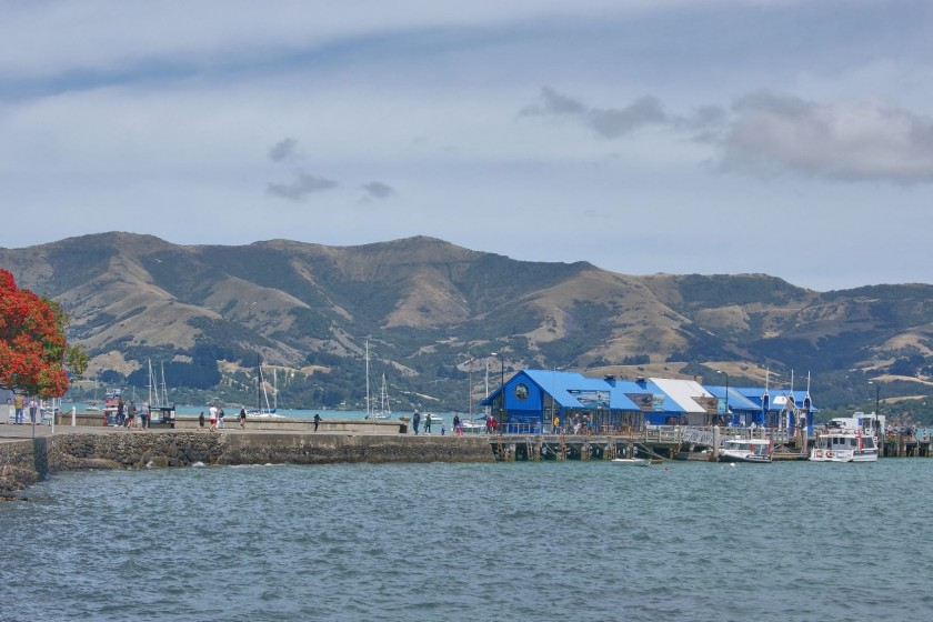 Spend some time at harbour front and on Akaroa Beach; New Zealand