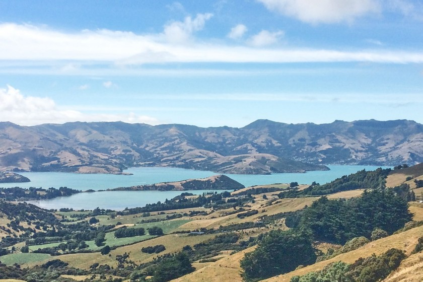 Hilltop view over Akaroa harbour; New Zealand;Things to Know Before Traveling to New Zealand
