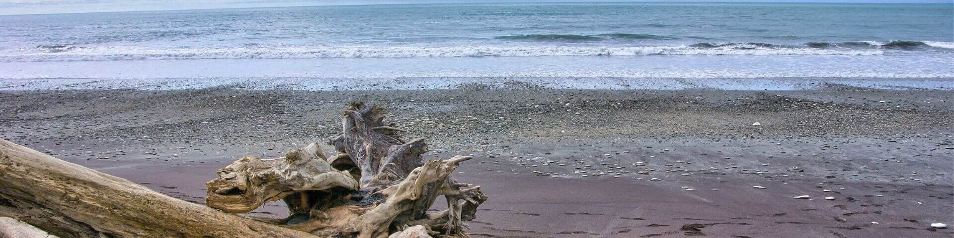 The beaches of Bruce Bay, West Coast of South Island