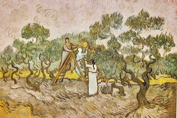 Van Gogh Painting in Saint-Rémy-de-Provence