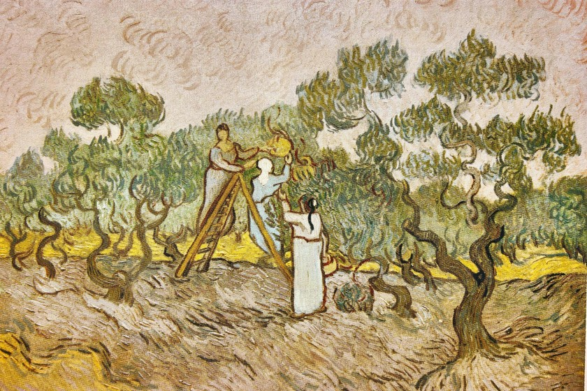 Van Gogn's Painting of olive pickup scene