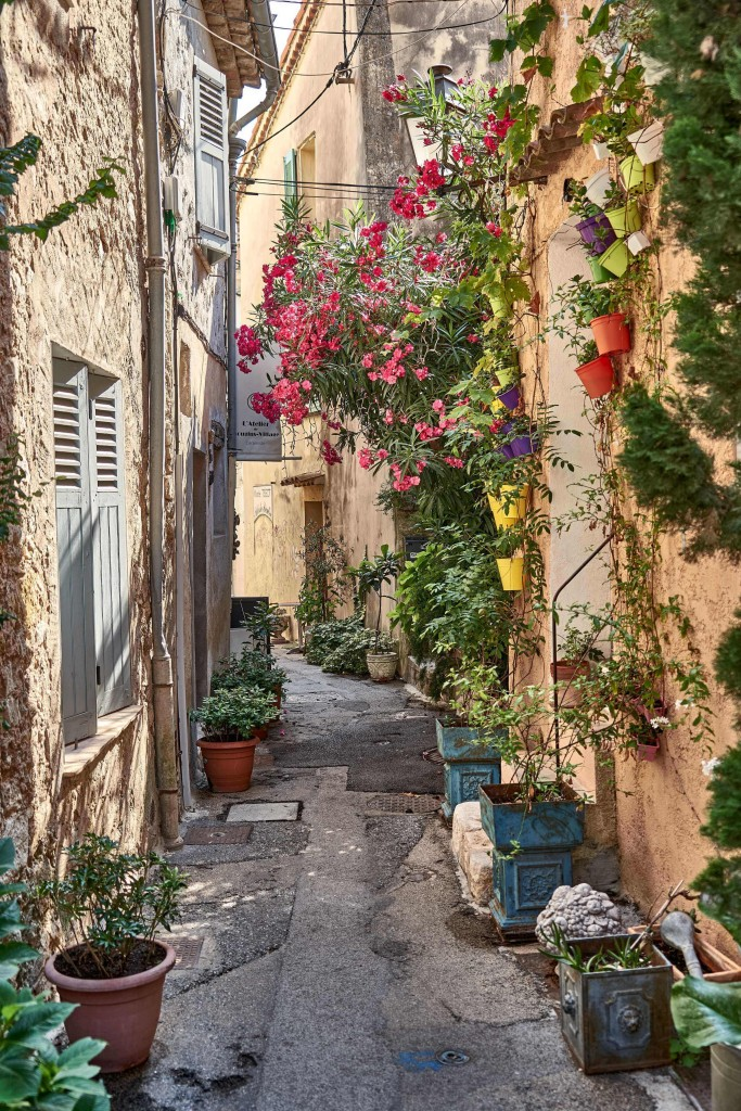 Mougins; Gourmet Centre of Provence