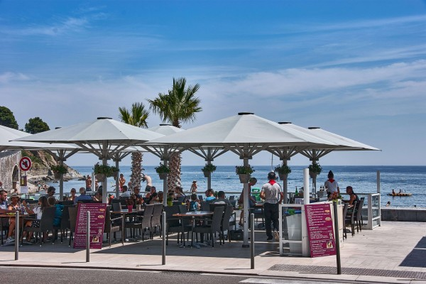 Seaside Restaurant in Banyuls-Sur-Mer, France