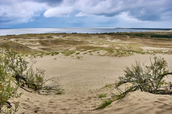 Parnidis Dune on Curonian Spit, Lithuania