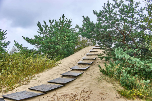 On top of the Parnidis Dune on Curonian Spit, Lithuania