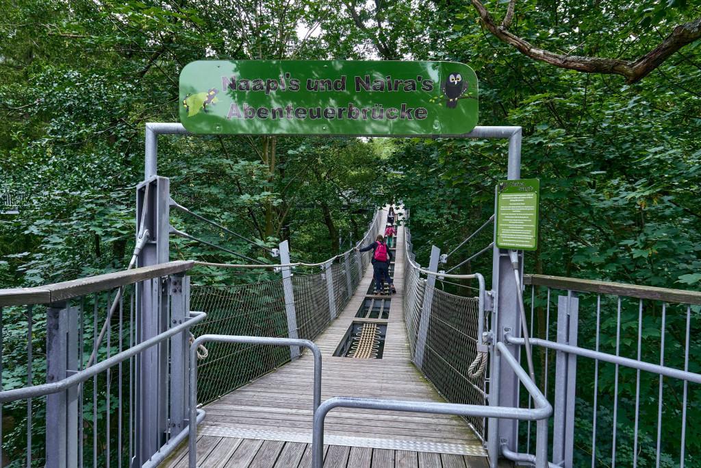 Itinerary in Germany's Harz Mountains; Baumwipfelpfad in Harz; Treetop Walking