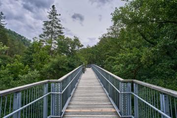 Treetop Trail in Bad Harzburg, Germany