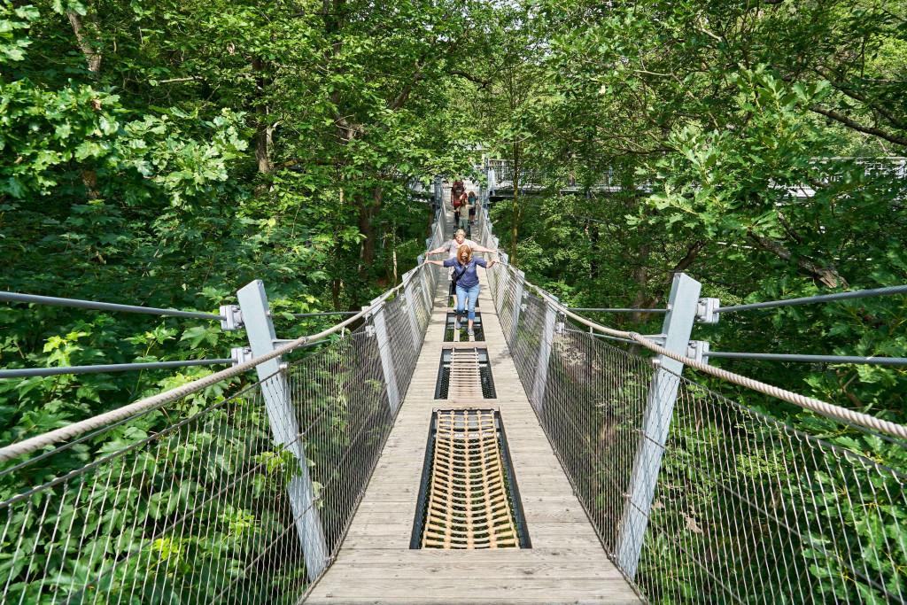 Fun on the Swing Bridge