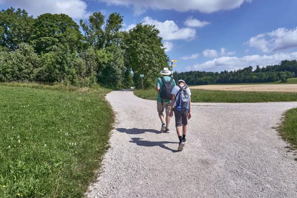 Walkway to the Zellerhorn Gipfel